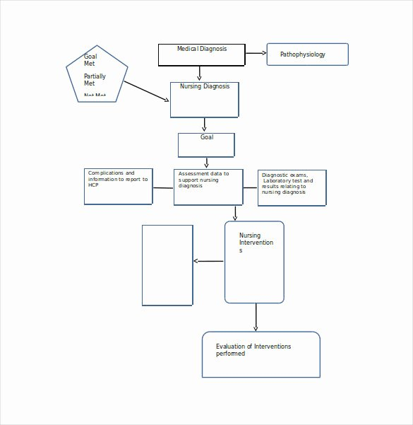 10 Sample Concept Map Templates