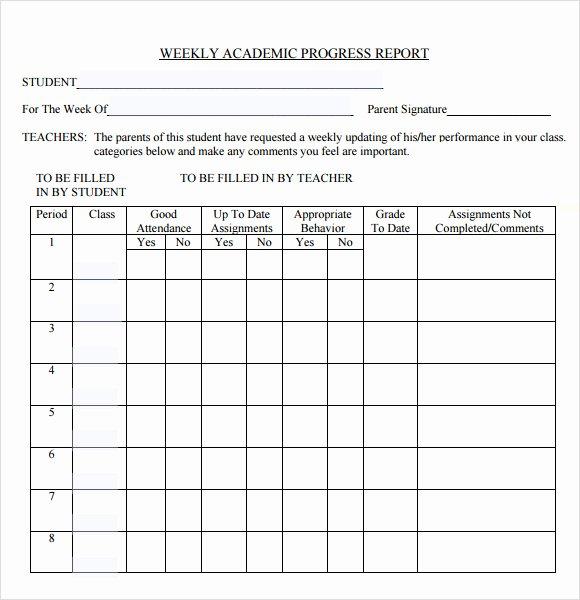 13 Sample Weekly Progress Reports