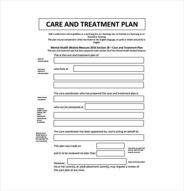 13 Treatment Plan Templates Free Sample Example