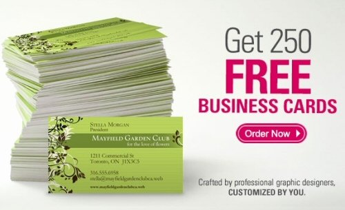 250 Free Business Cards Fragmatfo