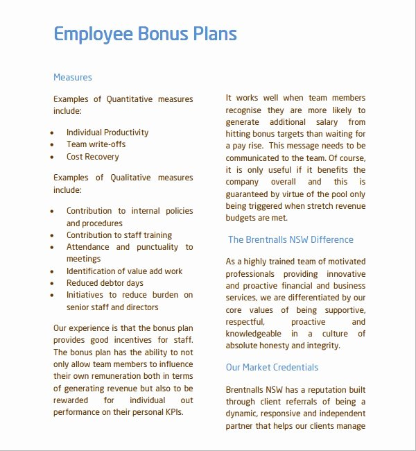 7 Bonus Plan Templates