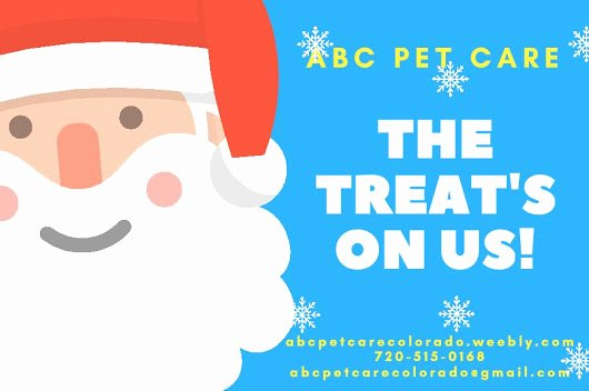 Abc Pet Care Colorado Google