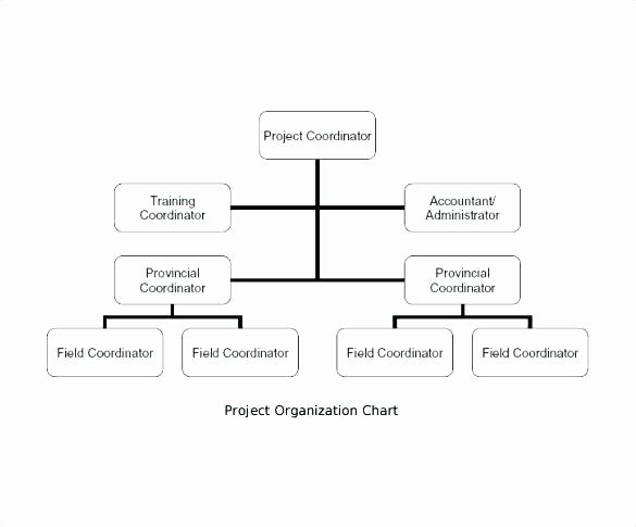 administration of the school organizational chart template organization word 2010 org non profit sample organisational example