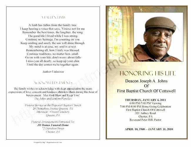 Celebrating the Life Funeral Program Template Free