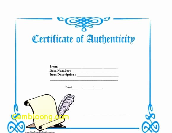 Certificate Authenticity Template New 37 Certificate