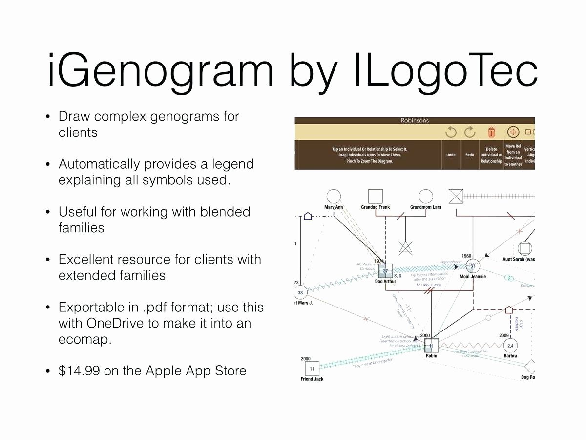 Family Genogram Template Word Four Generation Tree Free