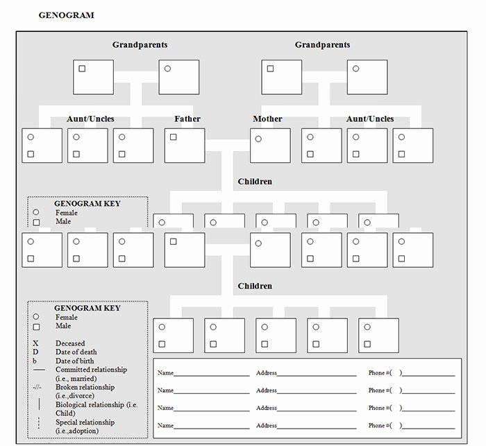 Genogram Template for Mac Templates Data