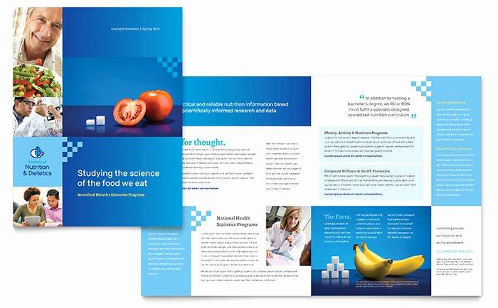 Half Page Flyer Template Yourweek Eeeaf6eca25e