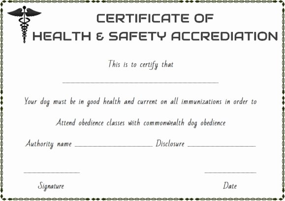 Pet Health Certificate Template 9 Word Templates to