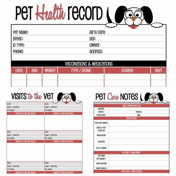 The Pet Set Dog Care organizer Pet Care organizer