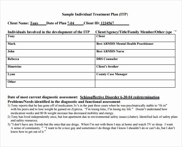 Treatment Plan Template