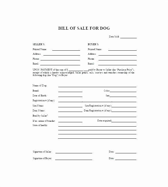 Veterinary Health Certificate Template – Calvarychristianfo