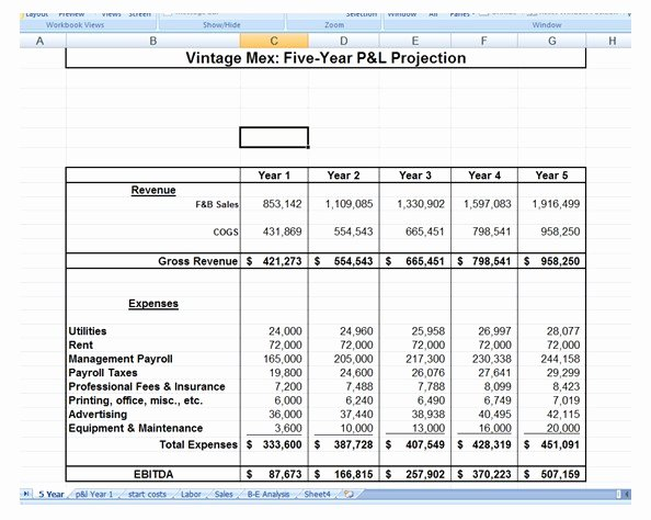 1 Year Business Plan Template