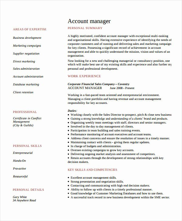 10 Account Manager Resume Templates Pdf Doc