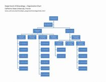 Microsoft organisational Chart Template