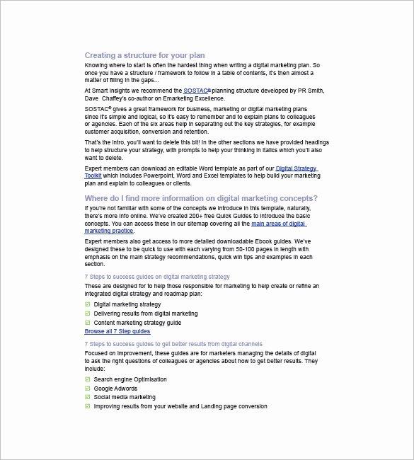 10 Digital Marketing Plan Template Free Sample Example