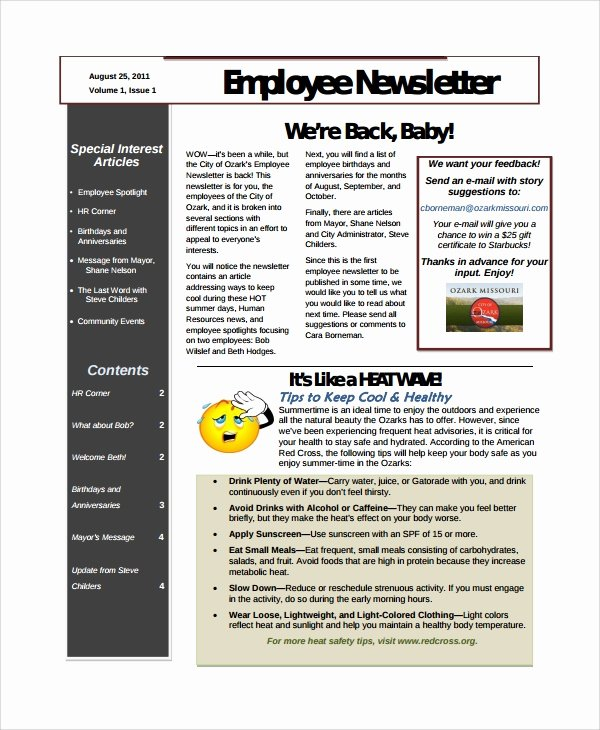 10 Employee Newsletter Templates
