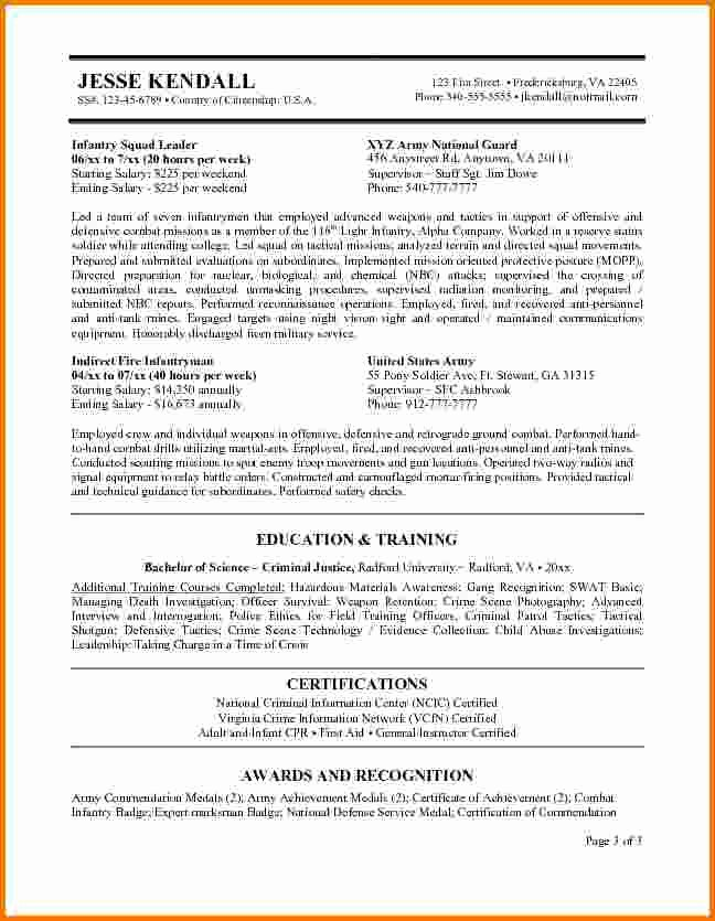 10 Federal Government Resume Samples