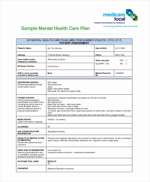 10 Healthcare Plan Templates Pdf Word
