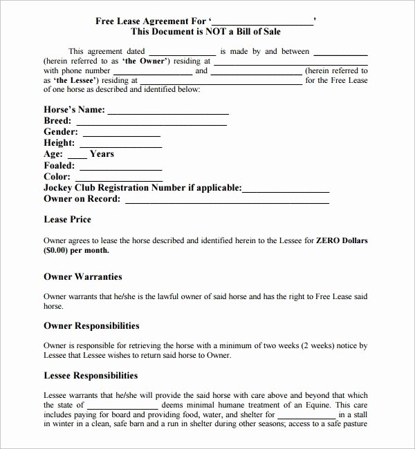 10 Horse Lease Agreement Templates