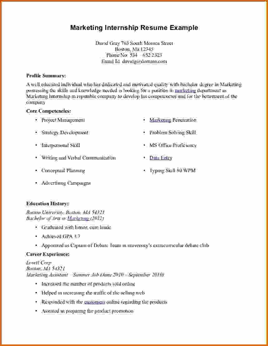 10 Intern Resume Examples