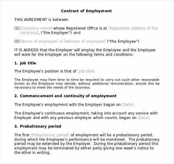 10 Microsoft Word Contract Templates Free Download