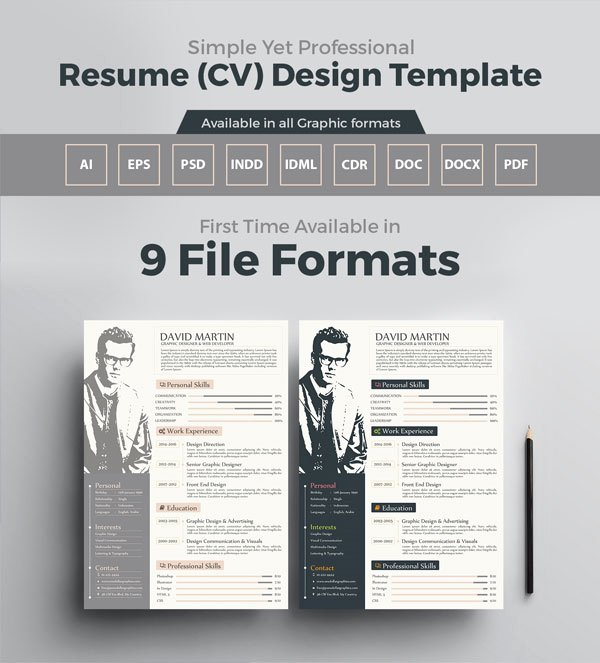 10 Newest Free & Premium Resume Templates for Graphic