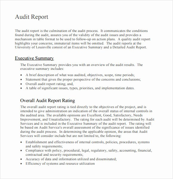 10 Sample Audit Report Templates