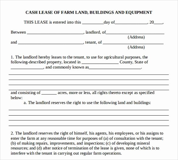 10 Sample Basic Lease Agreement Templates