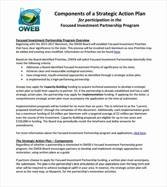 10 Sample Strategic Action Plans