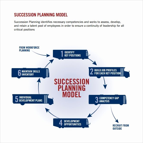 succession plan template