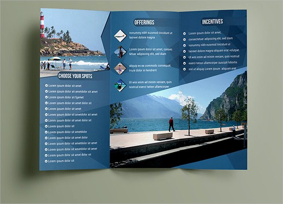 10 Travel Brochures