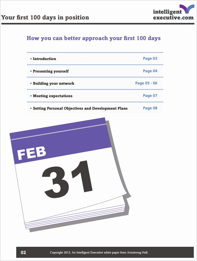 100 Day Plan Template 4 Free Pdf Documents Download