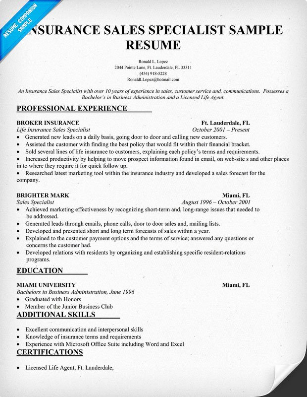 p independent insurance agent resume