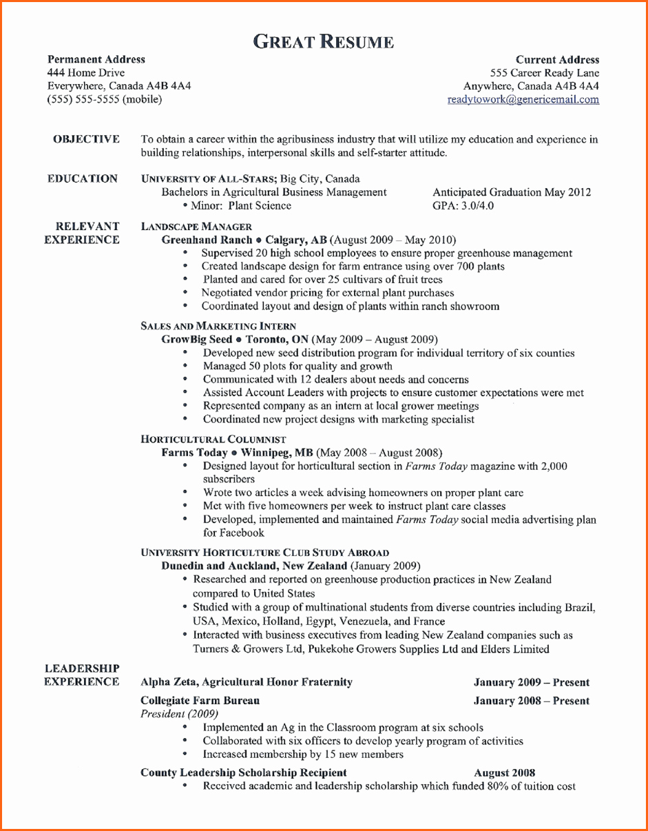 11 Good Resume Templates Bud Template Letter