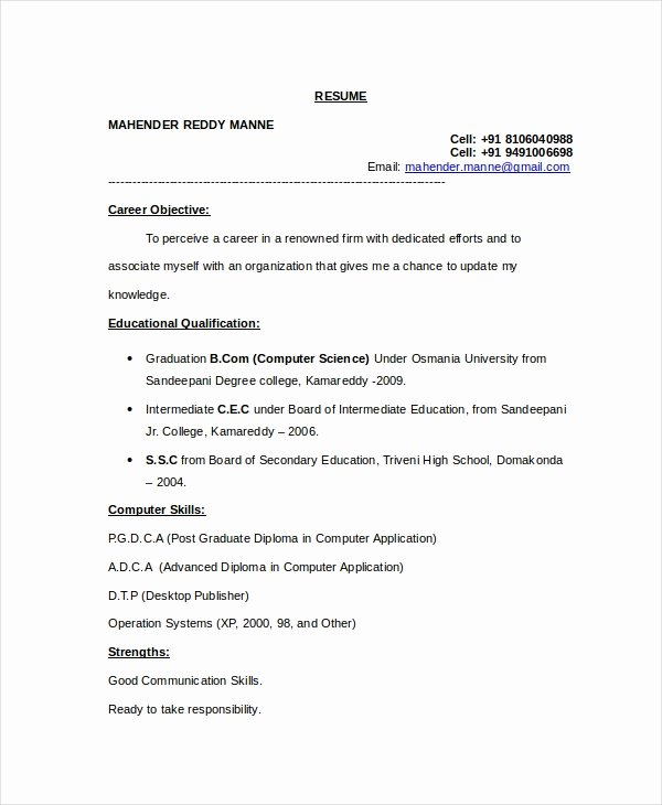 11 Puter Science Resume Templates Pdf Doc