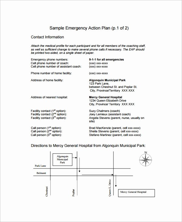 11 Sample Emergency Action Plan Templates