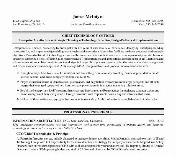 11 Sample Executive Resume Templates Pdf Doc