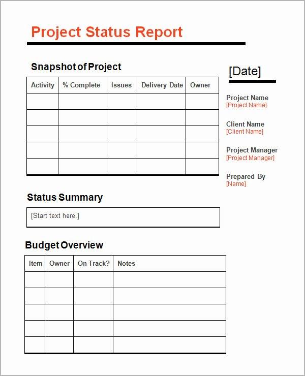 11 Sample Status Reports
