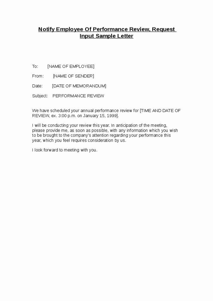 12 Best Of Performance Letter Template Employee