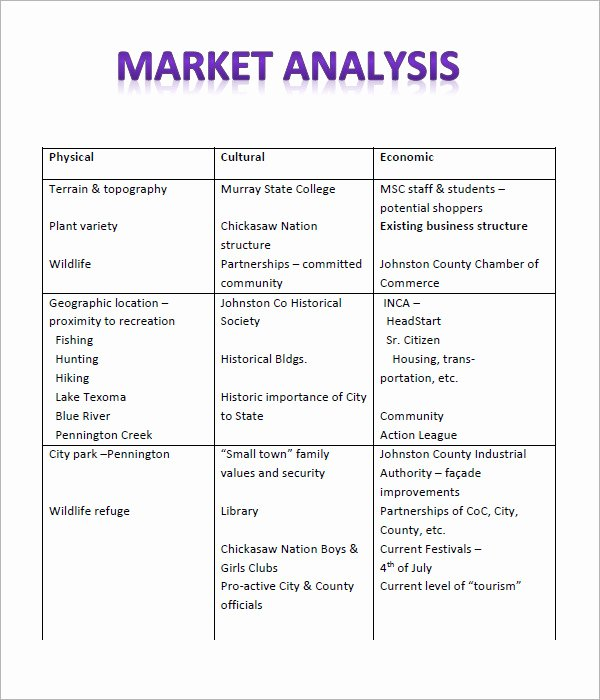 12 Market Analysis Samples Examples Templates