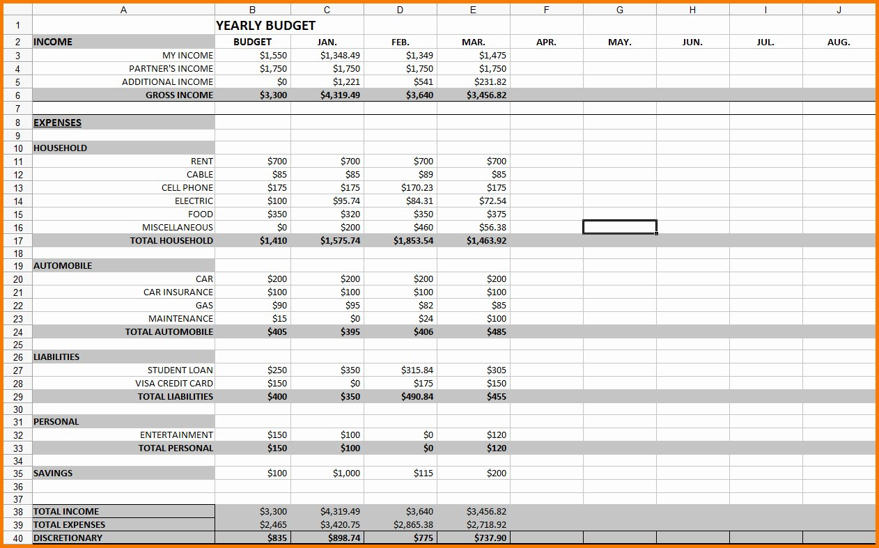 12 Month Business Bud Template Excel Business