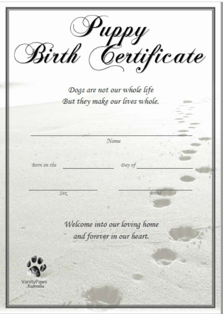 12 Pet Birth Certificate Designs & Templates Pdf Psd