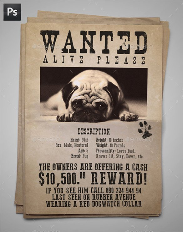 12 Psd Lost Dog Flyer Templates