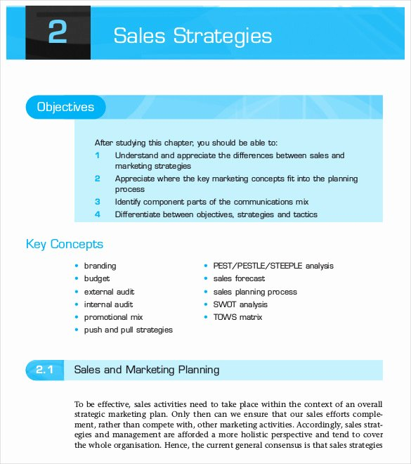 12 Sales Strategy Templates Doc Pdf