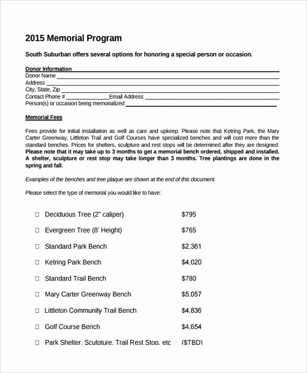 12 Sample Memorial Program Templates