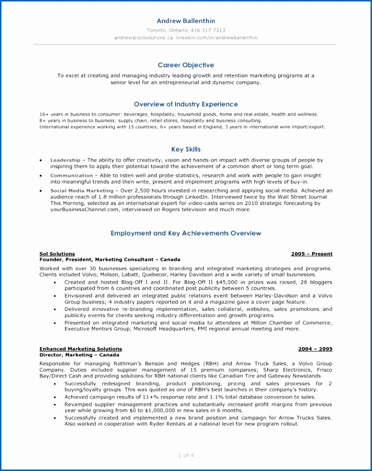 12 social Media Marketing Resume Sample