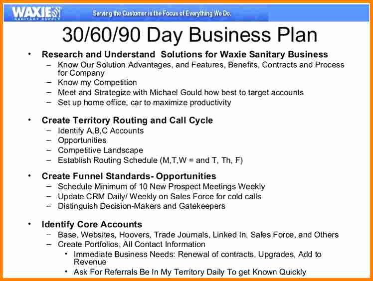 13 90 Day Sales Plan Template