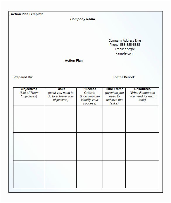 13 Business Action Plan Template Doc Pdf