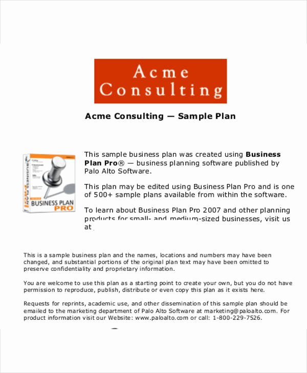 13 Consulting Business Plan Templates Free Word Pdf